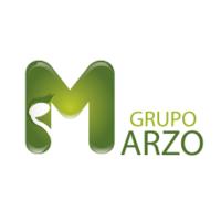 GRUPO MARZO PROFESSIONAL SERVICES